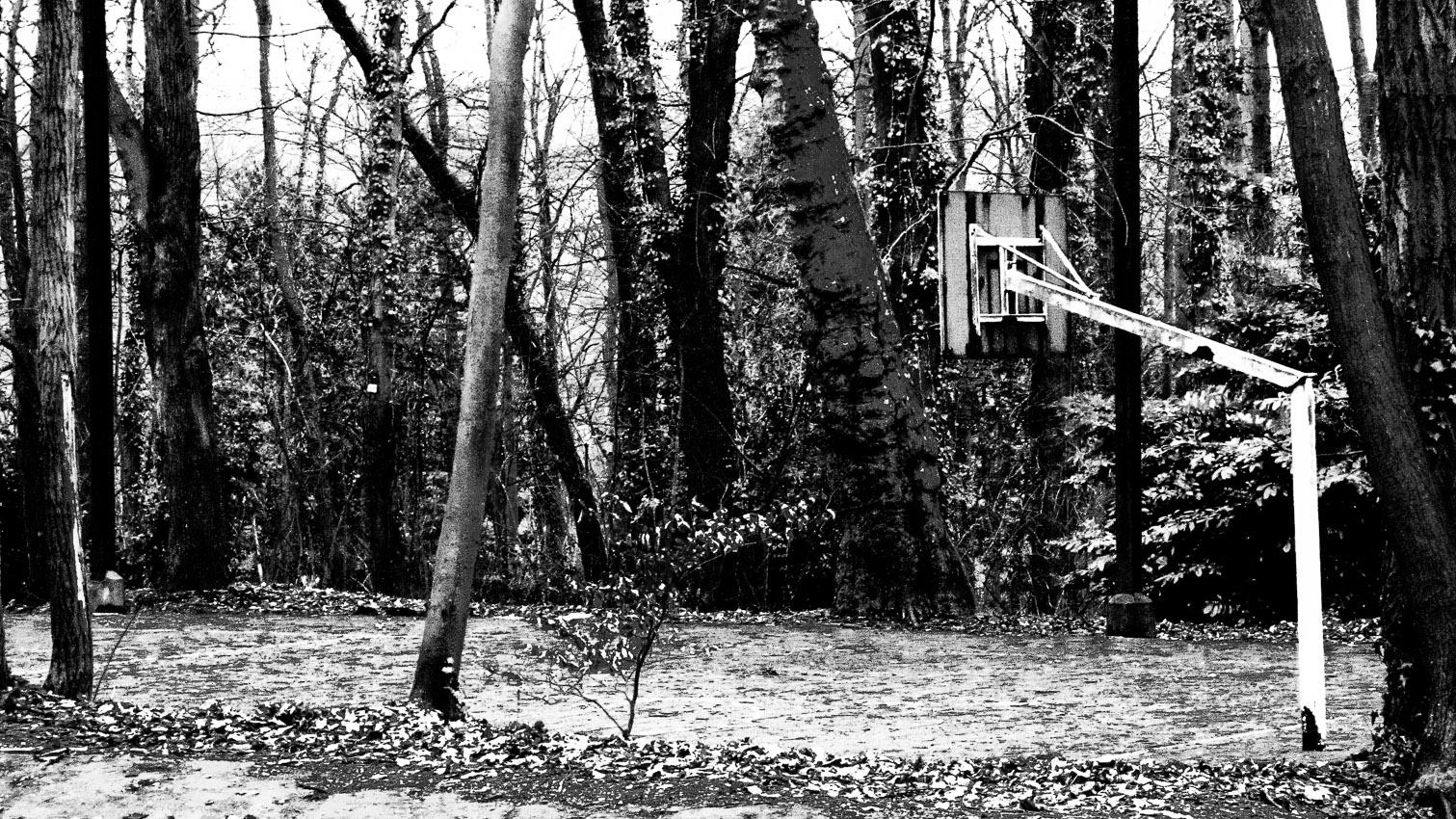 02-parc-foret-location-decors-film-cinema-photo-belgium-bruxelles