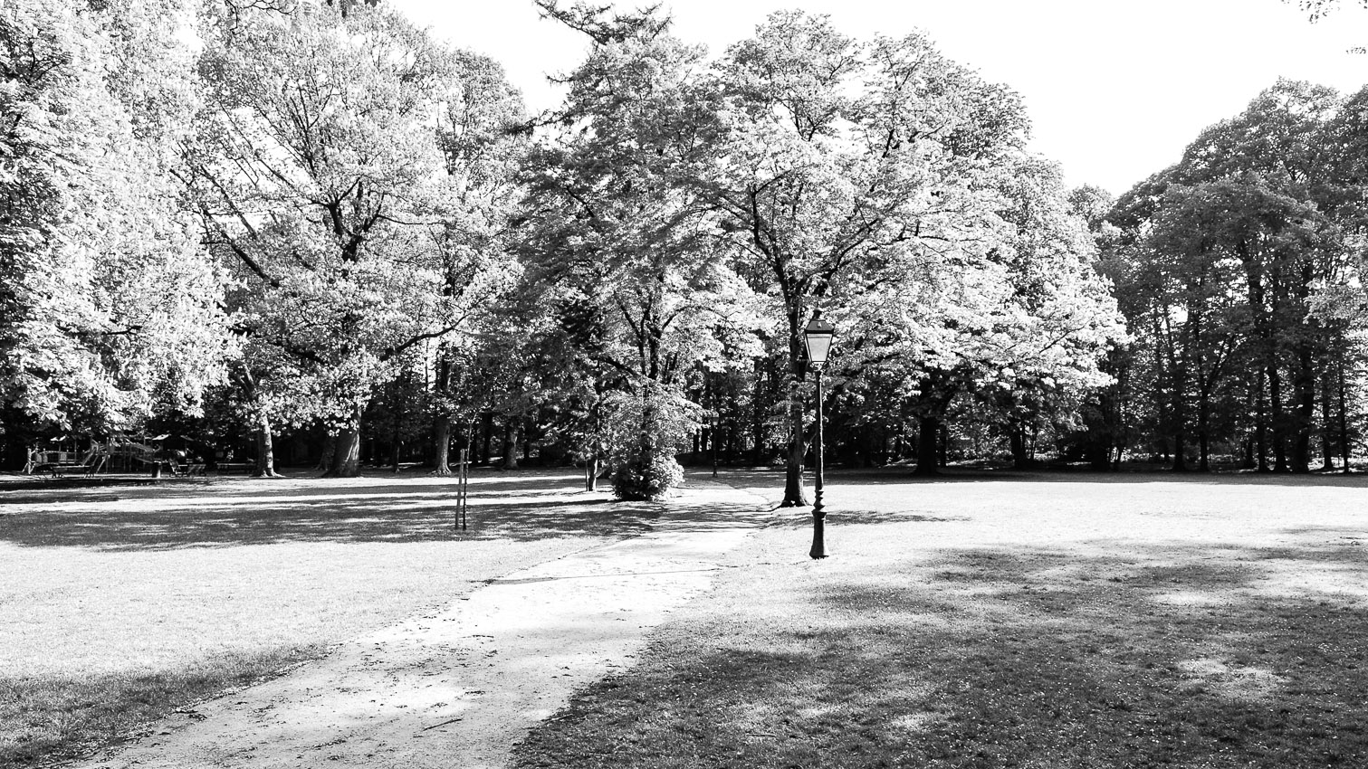 11-parc-foret-location-decors-film-cinema-photo-belgium-bruxelles