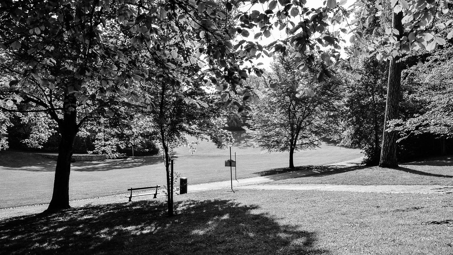 14-parc-foret-location-decors-film-cinema-photo-belgium-bruxelles