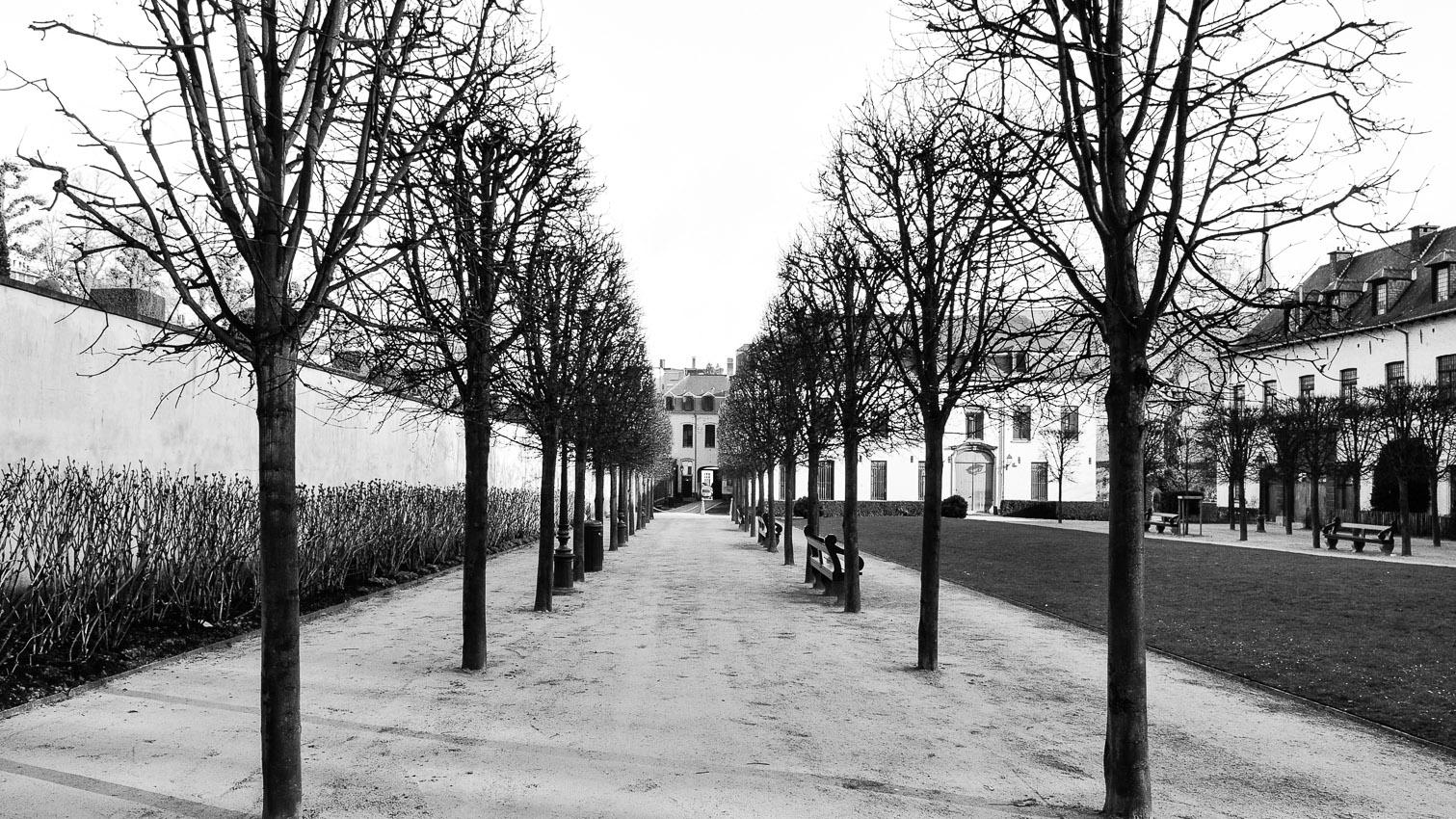 17-parc-foret-location-decors-film-cinema-photo-belgium-bruxelles