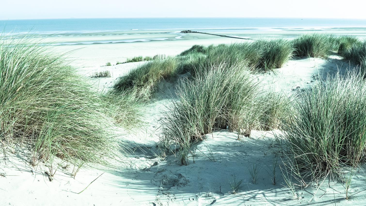 19-mer-plage-dune-location-decors-film-cinema-photo-belgium-bruxelles