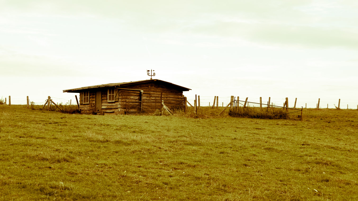 21-habitat-alternatif-yourte-cabane-decors-film-cinema-photo-belgium-bruxelles