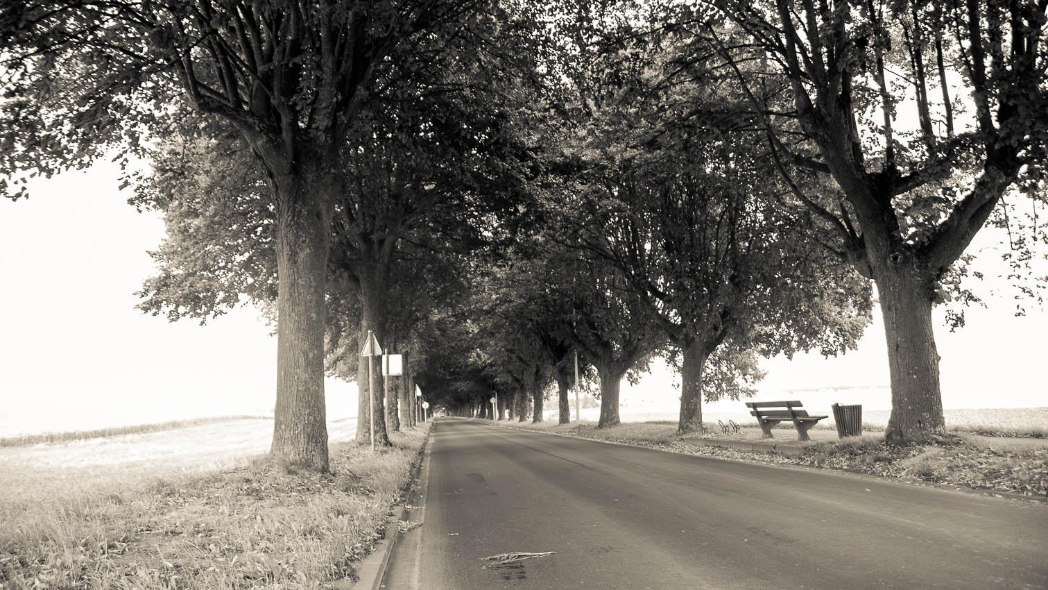 24-route-paysage-location-decors-film-cinema-photo-belgium-bruxelles