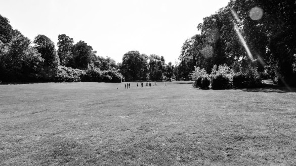 48-park_forest_scouting_shooting_film_photo-brussels_belgium