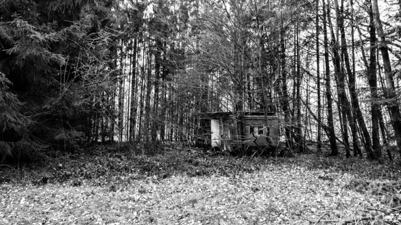 54-park_forest_scouting_shooting_film_photo-brussels_belgium