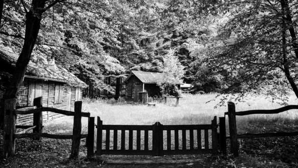 62-park_forest_scouting_shooting_film_photo-brussels_belgium