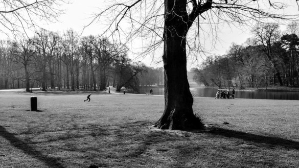 83-park_forest_scouting_shooting_film_photo-brussels_belgium