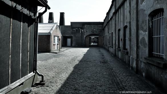 à louer hangar warehouse zoning belgique belgium #brunitophotograhy-43