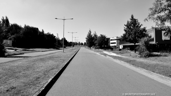 à louer hangar warehouse zoning belgique belgium #brunitophotograhy-61