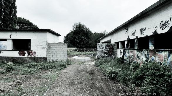 à louer hangar warehouse zoning belgique belgium #brunitophotograhy-84