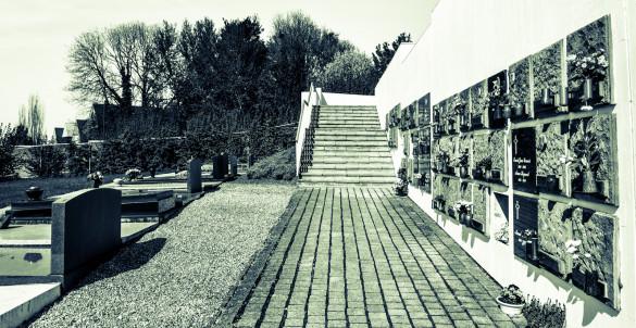 Cimetière calme et moderne. Modern and quiet cemetery graveyard.