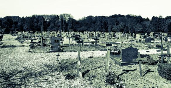 Cimetière avec croix en bois. Graveyard cemetery with wooden crosses.