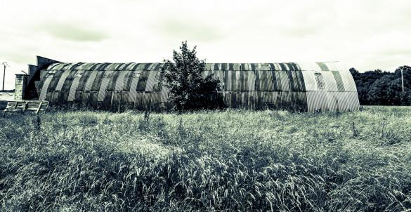 Long hangar courbe plongé dans la nature. Long curverd warehouse lost in the nature.